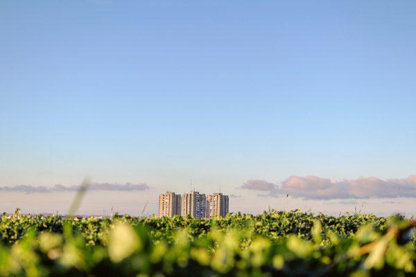 Towards sustainable urban planning